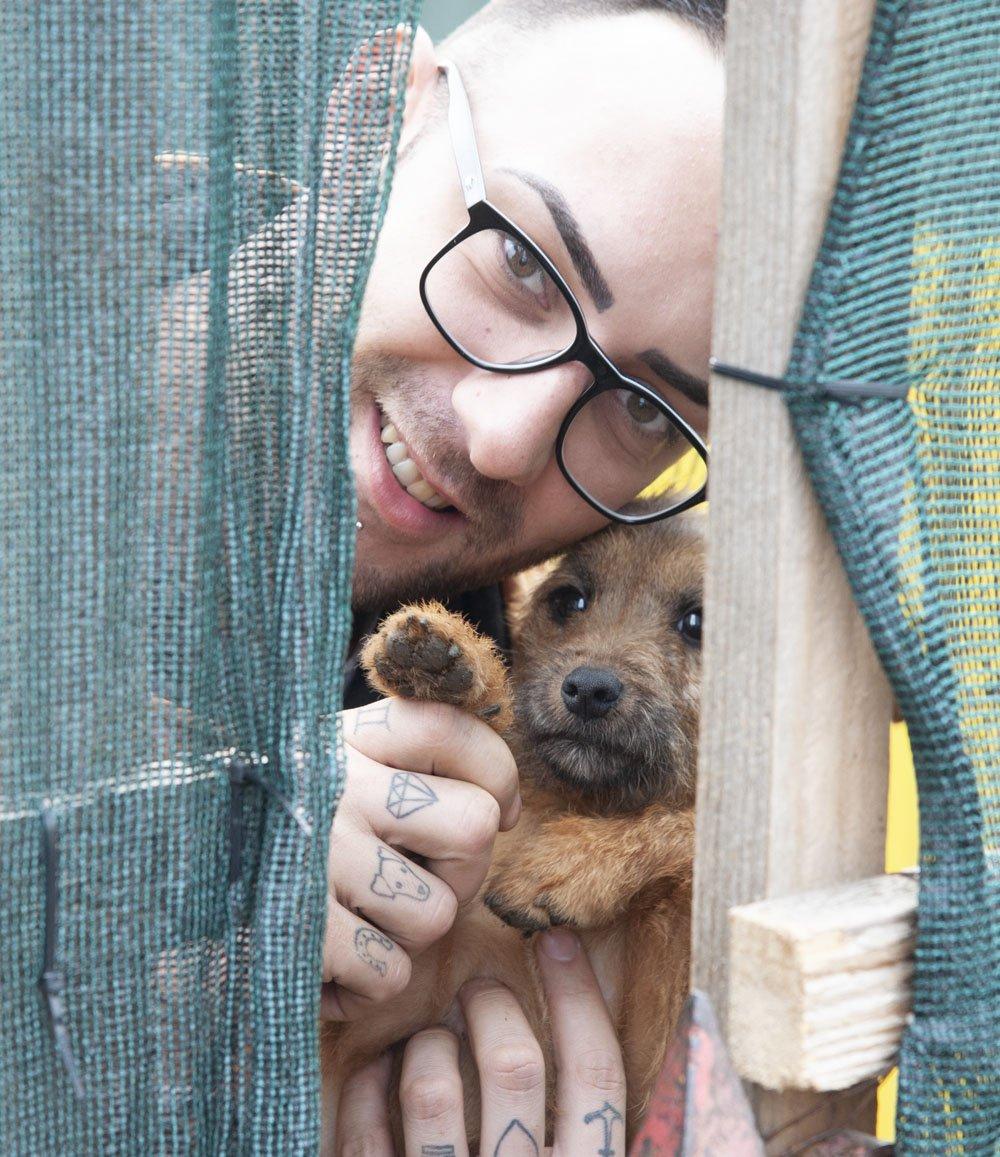 Jovica rescue dogs